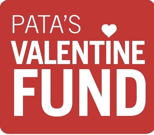 logo for PATA's Valentine Fund